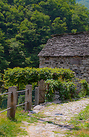 Picturesque scene from a tiny village in Valle Verzasca, Ticino, Switzerland featuring an old, rustic building.