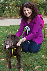 MPs and members of the House of Lords bring their pooches to Parliament as they compete to be crowned The Dogs' Trust and The Kennel Club's Westminster Dog Of The Year. PICTURED: Diana Dobson MP (Hull North) and Dogs Trust rescue dog Ernie.