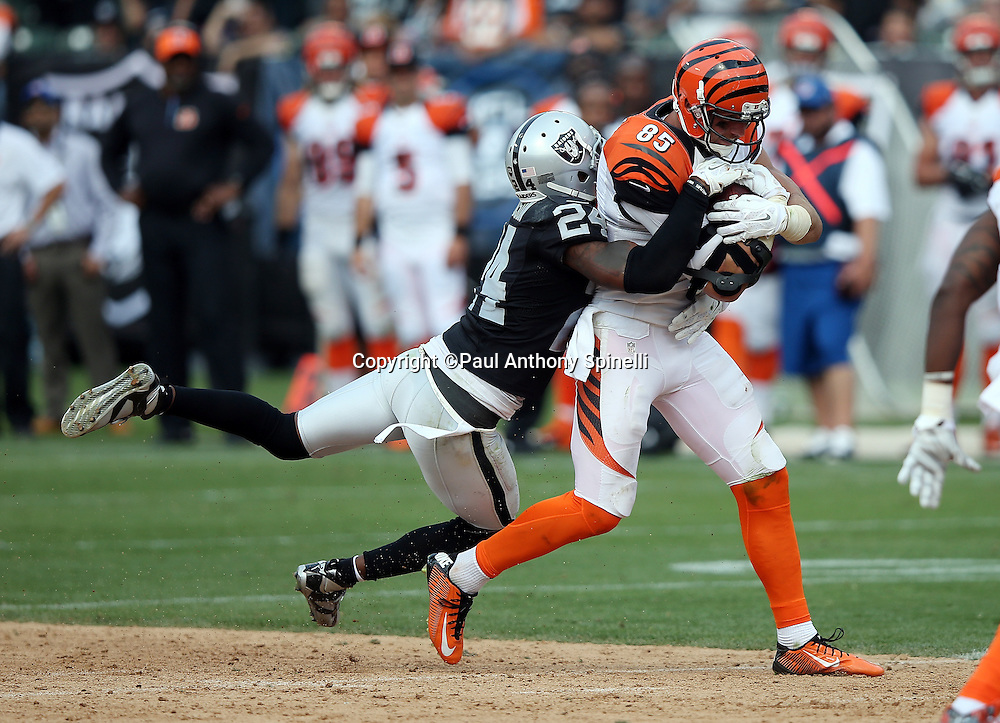 Cincinnati Bengals tight end Tyler Eifert (85) catches a pass and gets tackled by Oakland Raiders free safety Charles Woodson (24) during the 2015 NFL week 1 regular season football game against the Oakland Raiders on Sunday, Sept. 13, 2015 in Oakland, Calif. The Bengals won the game 33-13. (©Paul Anthony Spinelli)