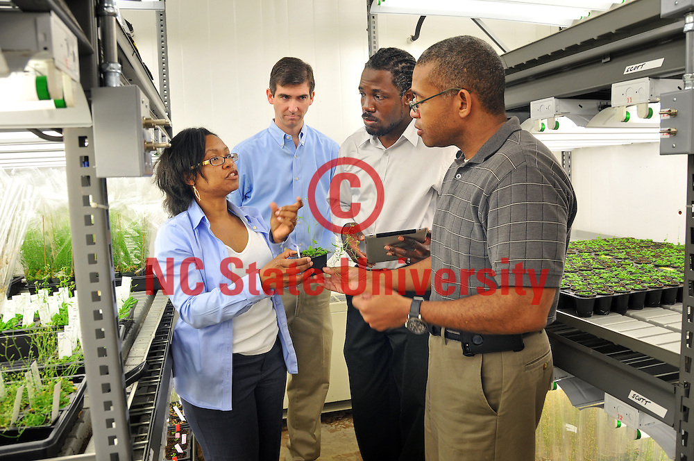Terri Long (left) tells James Tuck, Cranos Williams and Joel Ducoste (right) about her work going on in the phytotron.