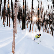 Forrest Jillson skis amongst the wildfire burned trees in the Teton backcountry.