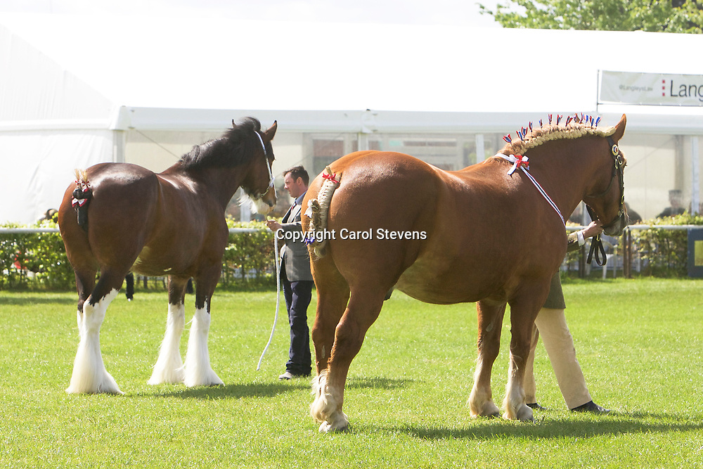 LEFT<br />