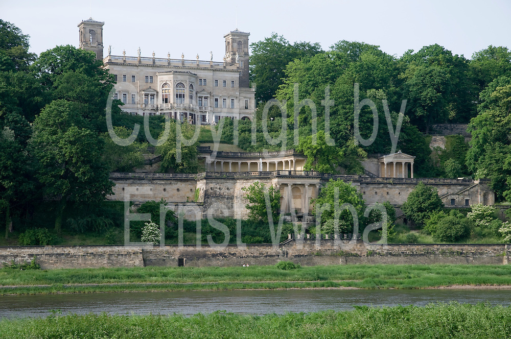 Elbeufer, Elbwiesen, Schloss Albrechtsberg, , Dresden, Sachsen, Deutschland. .Dresden, Germany, river Elbe shore, Albrechtsberg Castle