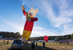 © Licensed to London News Pictures. 09/08/2018. Bristol, UK. Bristol International Balloon Fiesta 2018 at Ashton Court estate which runs from Thursday 09 to Sunday 12 August. This year is the event's 40th anniversary and includes some special shape balloons that have not been seen for years, including Rupert the Bear (pictured) which has not been to the fiesta since the 1990s. A few balloons were inflated on Thursday evening but due to strong winds there was no mass ascent on Thursday evening. Photo credit: Simon Chapman/LNP