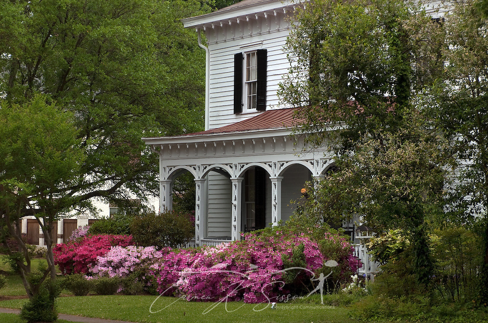 Azaleas bloom in front of the Amzi Love Home in Columbus, Miss. April 19, 2010. The 1848 home, which has been featured in Fodor's Travel Guide and The New York Times Travel Magazine, was among nearly two dozen on tour during Columbus' annual Spring Pilgrimage. (Photo by Carmen K. Sisson/Cloudybright)