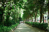 Minzu Road in Nanning is a feature avenue for the local governments Green Nanning project.  Thousands of Yuan have been invested greening this premier street, a project which is being rolled out throughout the city.