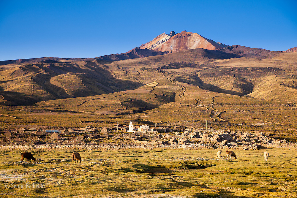 Llamas graze below Mt. Thunupa volcano on Bolivia's Altiplano next to the Salar de Uyuni.