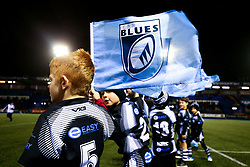 Cardiff Blues flag - Rogan/JMP - 02/11/2019 - RUGBY UNION - Cardiff Arms Park - Cardiff, Wales - Cardiff Blues v Munster Rugby - Guinness Pro14.