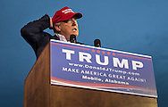 Aug. 21. 2015 Mobile, AL, Republican presidential candidate and business mogul Donald Trump speaks at his campaign pep rally in Ladd Peebles Stadium. Over 20 thousand came to the Ladd-Peebles Stadium to attend Trumps campaign pep rally. People were asked not to bring signs.
