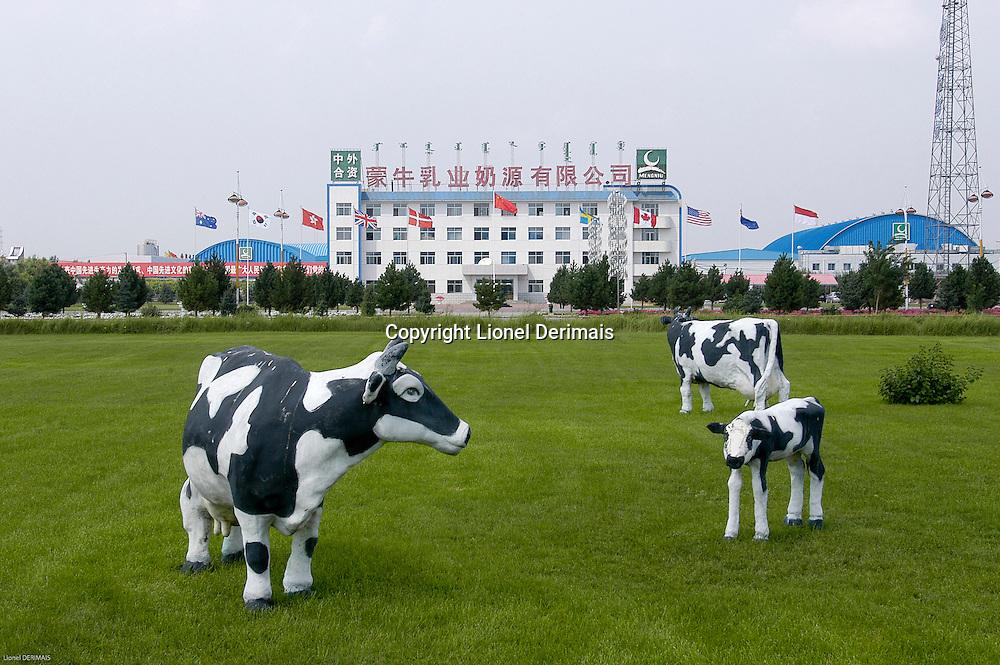 Meng Niu dairy farm in Inner Mongolia, China. September 2006.