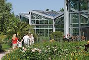 Palmengarten, Tropicarium, Frankfurt am Main, Hessen, Deutschland | Palmengarten, botanical garden in Frankfurt, Tropicarium , Germany