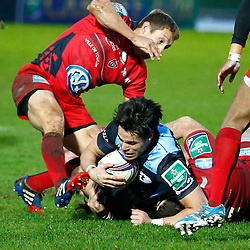Glasgow Warriors v Toulon | Heineken Cup | 18 January 2014