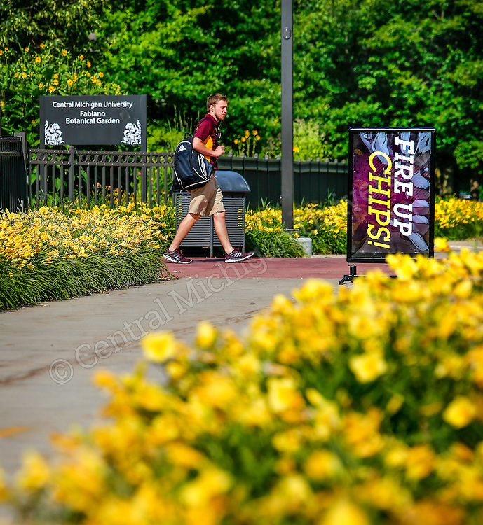 SUMMER SCENICS on the campus of Central Michigan University in July 2015. Photo by Steve Jessmore/ Central Michigan University