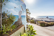 Ocean View Homes in Laguna Beach California