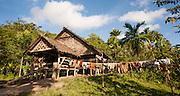 Mentawai indigenous people house (Indonesia).