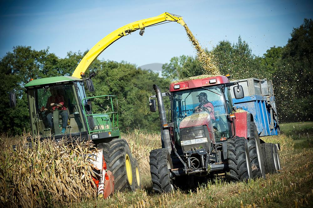 28/08/18 - DORAT - PUY DE DOME - FRANCE - Recolte de maïs d ensilage - Photo Jerome CHABANNE
