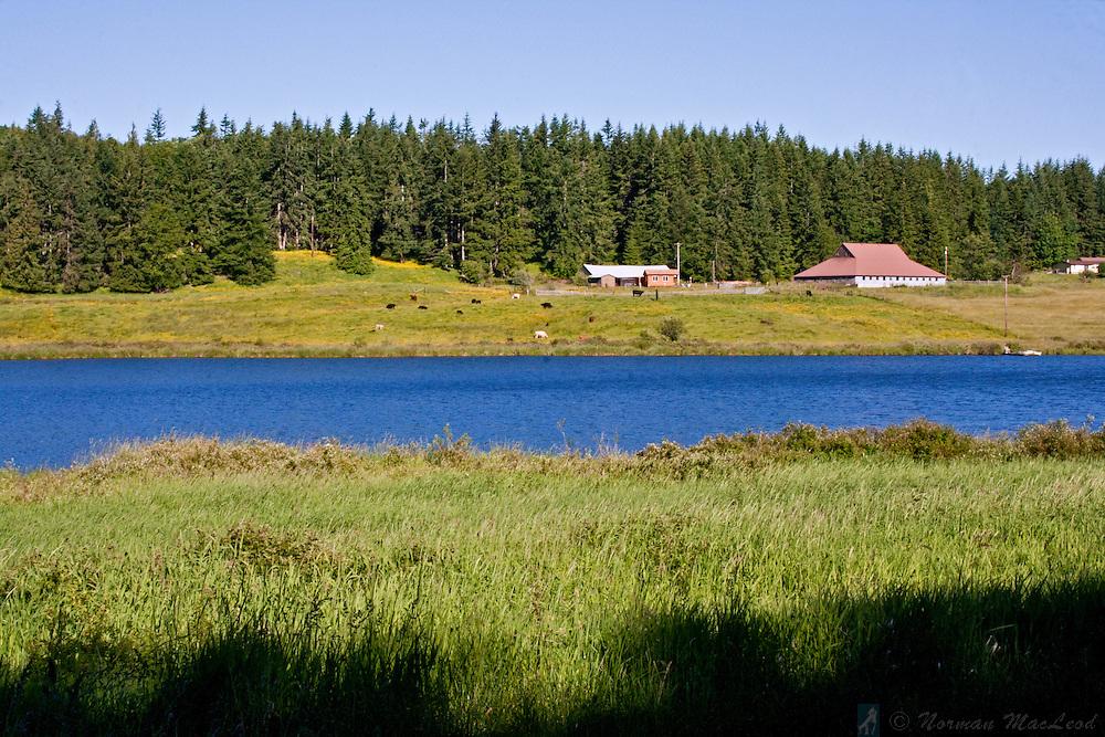 Farm at Eaglemount, near Chimacum, on Washington's Olympic Peninsula south of Discovery Bay