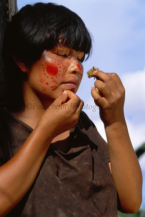 Campa Indian painting her face with Achiote<br />Lower Urubamba River<br />Amazon Rain Forest,  PERU.  South America<br />from Achiote Plant