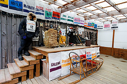 Ititarod sled dog and mushing display, Dredge Town, Skagway, Alaska, United States of America