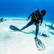 It pays to pay attention to your surroundings any time you are in the ocean, but especially so if you have a bloody, writhing fish on the end of a spear.