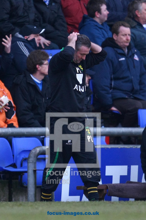 Oldham - Saturday February 26th, 2010 :  Norwich Manager Paul Lambert during the Coca Cola League One match at Boundary Park, Oldham. (Pic by Paul Chesterton/Focus Images)..