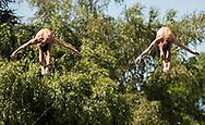Team GERMANY HAUSDING Patrick FECK Stephan gold medal<br /> Bolzano, Italy <br /> 22nd FINA Diving Grand Prix 2016 Trofeo Unipol<br /> Diving<br /> Men's 3m synchronised springboard final <br /> Day 03 17-07-2016<br /> Photo Giorgio Perottino/Deepbluemedia/Insidefoto