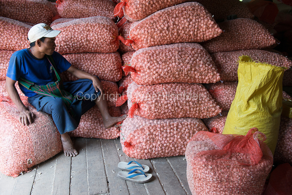 Worker at a Garlic warehouse and distribution centre. Tar Yaw Village.