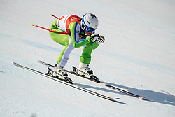 21-02-2018 KOR: Olympic Games day 12, PyeongChang<br /> Ladies Downhill at Jeongseon Alpine Centre / Marusa Ferk, of Slovenia, in action