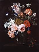 Flowers in a Glass Vase' Oil on canvas. Nicolaes van Veerendael (1640-1691) Dutch Baroque painter. Tulip Carnation Rose Morning Glory Jasmine Rose