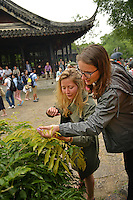 Study Abroad CALS students look over a plant at the Humble Administrator's Garden in Suzhou.