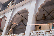 Monkeys are seen on a building walls in the holy city of Varanasi, India.