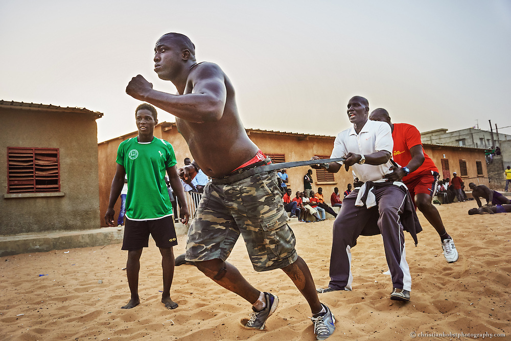 March 30, 2015. Lac de Guiers 2 has to run and pull his eponym, the Ex-Wrestler Lac de Guiers 1, through the sand.  The hardworkout was worth it, Lac De Guiers 2 sensationally defeated the favoured Wrestler Papa Sow at a fight in the Demba Diop stadium in Dakar on April 12,  2015.