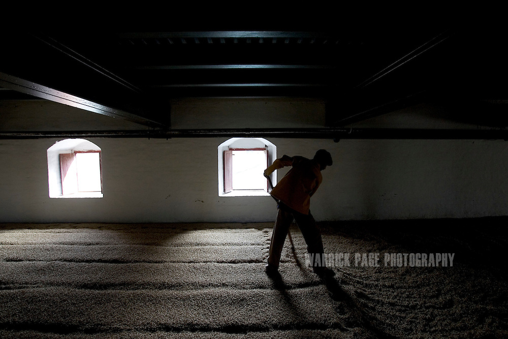 A worker shovels barley at the Murree Brewery, Thursday, December 21, in Rawalpindi, Pakistan.   The brewery boasts the first 20 year-old malt whiskey in the Muslim world, due for release in mid-2007. Established more than a century ago under British Raj, Murree Brewery also is Pakistan's oldest company and one of two breweries in a country under prohibition. Muslims have been banned from drinking alcohol since it was outlawed in 1977, but Christians and Hindus may still buy alcohol. The brewery hopes to export the exclusive whiskey to Europe and the Middle East. (Photo by Warrick Page)