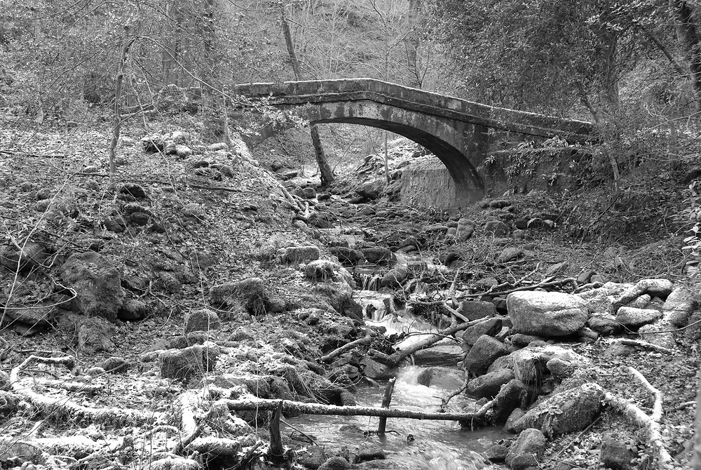 Sheffield, UK - Jan 2015: Tinker Brook passes beneath a Packhorse Bridge, a footbridge in Glen Howe park on 18 Jan 2015 near Wharncliffe Side