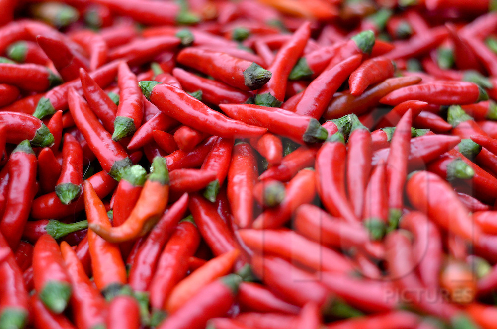 Red chili peppers at Bac Ha market, Lao Cai province, North Vietnam.