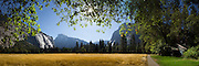 Super high resolution, composite panoramic wall mural of Yosemite National Park, CA
