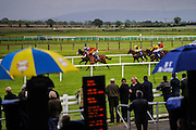 Fairyhouse horse races, bookmakers. This hippodrome is one of the most importants of Ireland.