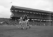 22/09/1968<br /> 09/22/1968<br /> 22 September 1968<br /> All Ireland Minor Football Final: Sligo v Cork at Croke Park Dublin. M. Doherty (no.14) Cork full forward gets the ball in a scuffle with J. Brennan (no.3) Sligo full back.