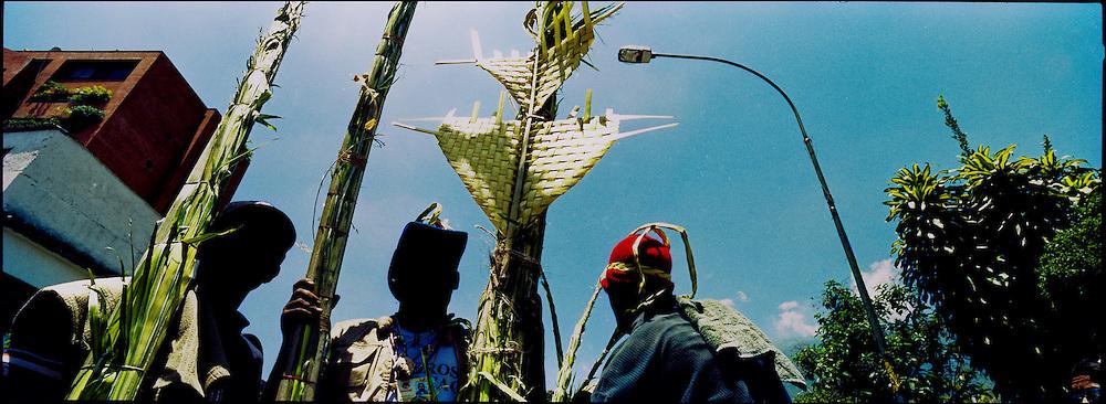 PALMEROS OF CHACAO / PALMEROS DE CHACAO<br /> Photography by Aaron Sosa<br /> Caracas - Venezuela 2004<br /> (Copyright © Aaron Sosa)