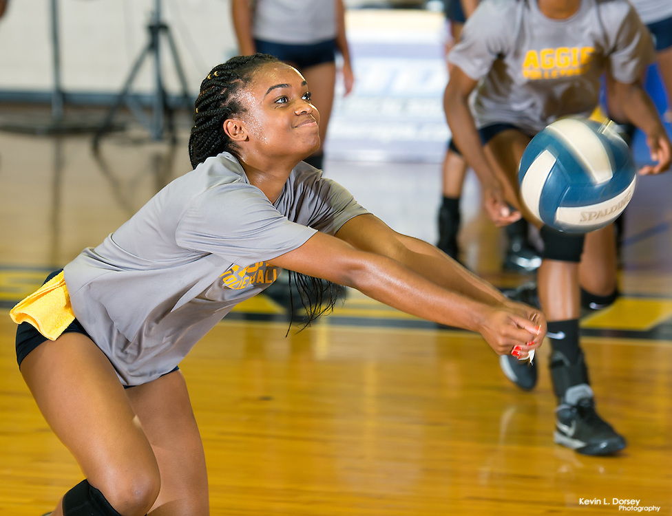 2016 A&T Volleyball vs Elon University (Home Open Match)