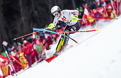 "29.01.2019, Planai, Schladming, AUT, FIS Weltcup Ski Alpin, Slalom, Herren, 1. Lauf, im Bild Elias Kolega (CRO) // Elias Kolega of Croatia in action during his 1st run of men's Slalom ""the Nightrace"" of FIS ski alpine world cup at the Planai in Schladming, Austria on 2019/01/29. EXPA Pictures © 2019, PhotoCredit: EXPA/ JFK"