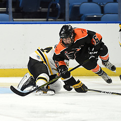 BUFFALO, NY - SEP 20,  2017: Ontario Junior Hockey League Governors Showcase game between the Orangeville Flyers and the Aurora Tigers, Maxwell Steeves #16 of the Orangeville Flyers battles for the puck during the second period.<br /> (Photo by Andy Corneau / OJHL Images)