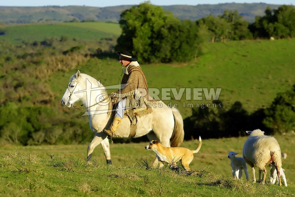 Um gaúcho e seu rebanho de ovelhas nos campos de Encruzilhada do Sul. FOTO: Jefferson Bernardes/Preview.com