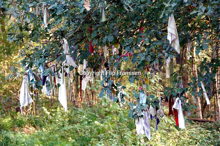 Nederland, Overasselt, 16-10-2013Bij de ruïne van Sint Walrick staat een wensboom.Tientallen stukjes textiel hangen hier aan de takken en vertegenwoordigen een ooit gedane wens. Week van de geschiedenis: geloof en bijgeloof.Foto: Flip Franssen