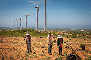 Workers on a windfarm in Ninh Thuan Province, Vietnam<br /> , Southeast Asia