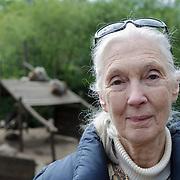 NLD/Amersfoort/20120518 - Persconferentie Jane Goodall,