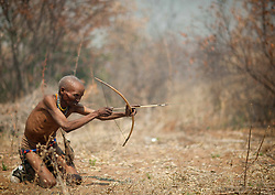 San (also called Bushmen) are an ethnic group of South West Africa. They live in the Kalahari Desert across the borders of Botswana, Namibia, Angola and South Africa. Most of the 100,000 San people live in Botswana (around 55,000) but about 25,000 live in Namibia..The San have a foraging lifestyle based on the hunting of wild animals (usually with bows and poison arrows and spears) and the gathering of veld food. The fact they are hunter gatherers accounts for their nomadic way of life. Their lifestyle is particularly adapted to the hard conditions of the Kalahari Desert. They know where waterholes are located and carry water in ostrich eggshells. They drink water from roots and tubers they find by digging the ground. The San are intelligent trackers and know the habits of their prey. they hunt game of all size : mice, buffalos, antelopes, and even giraffes sometimes. They also eat various types of insects especially during the dry season.. Sans are part of the Khoisan language peoples (including the herding tribe of the Khoikhoi) who speak a language based on click sounds (consonants), made with specific moves of the tongue.