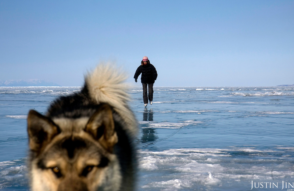 Heleen skates with a dog on Olkhon Island on Lake Baikal in Siberia, Russia. .They are a group of five people: Justin Jin (Chinese-British), Heleen van Geest (Dutch), Nastya and Misha Martynov (Russian) and their Russian guide Arkady. .They pulled their sledges 80 km across the world's deepest lake, taking a break on Olkhon, the world's forth-largest lake-bound island. They slept two nights on the ice in -15c. .Baikal, the world's largest lake by volume, contains one-fifth of the earth's fresh water and plunges to a depth of 1,637 metres..The lake is frozen from November to April, allowing people to cross by cars and lorries.