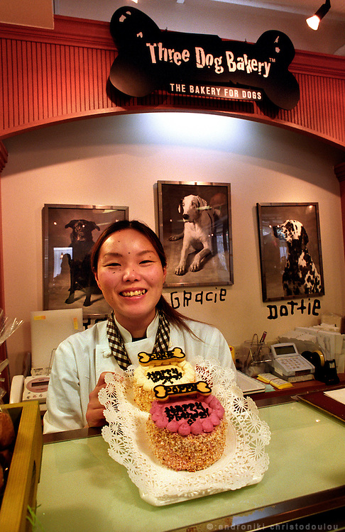 """Birthday cake from the """"Three Dog Bakery"""" in Tokyo..The bakery produces cakes, bisquits and sweets only for dogs..PHOTO: ANDRONIKI CHRISTODOULOU..www.androniki.com.photo@androniki.com"""