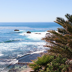 Photo of Southern California coastline with palm trees and the Pacific Ocean in Laguna Beach California.